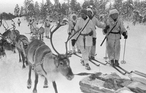 A Finnish Ski patrol with reindeer.